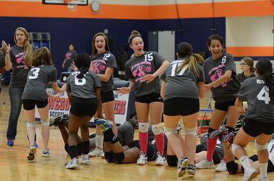 Girls Volleyball Vs Oswego 2013 018