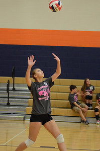 Girls Volleyball Vs Oswego 2013 038