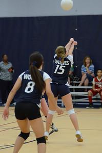 Oswego East Girls Volleyball Vs Bolingbrook 2013 266