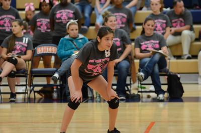 Girls Volleyball Vs Oswego 2013 401