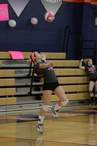 Girls Volleyball Vs Oswego 2013 378