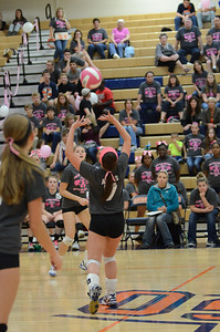 Girls Volleyball Vs Oswego 2013 452
