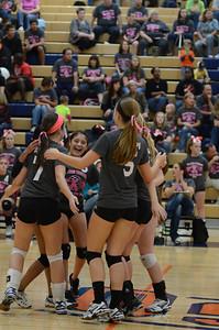 Girls Volleyball Vs Oswego 2013 373