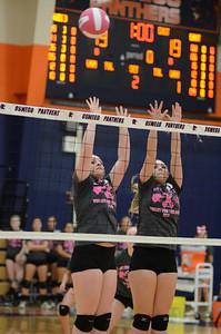 Girls Volleyball Vs Oswego 2013 345