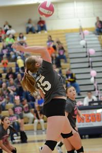 Girls Volleyball Vs Oswego 2013 368