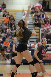 Girls Volleyball Vs Oswego 2013 394