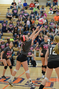 Girls Volleyball Vs Oswego 2013 418