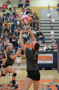 Girls Volleyball Vs Oswego 2013 422