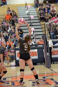 Girls Volleyball Vs Oswego 2013 366