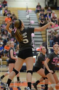 Girls Volleyball Vs Oswego 2013 393
