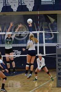 Girls Volleyball Vs Plainfield Central 2013 219