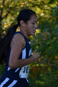 Cross Country 2013 021