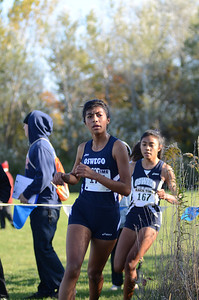 Cross Country 2013 046