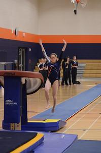 girls gymnastics 2013 061