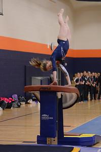 girls gymnastics 2013 066