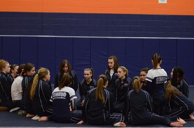 girls gymnastics 2013 008