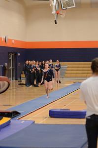 girls gymnastics 2013 018