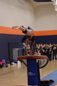 girls gymnastics 2013 096