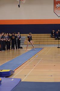 girls gymnastics 2013 060