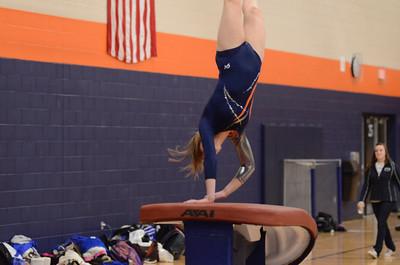 girls gymnastics 2013 033