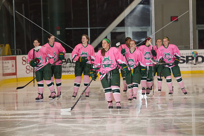 Pink the Rink 2015