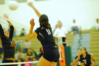 OE Vs Plainfield East VolleyBall 409