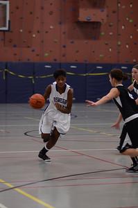 OE girls basketball Vs Kaneland 114