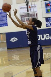 OE girls basketball Vs Plainfield So  2012 385