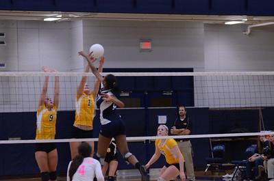 Oswego East Volleyball Vs Metea Valley 2012 143