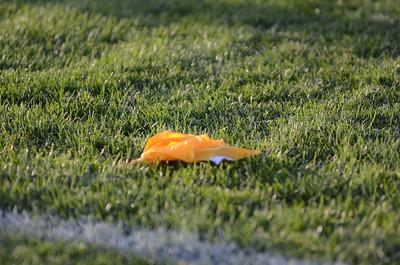 Oswego East Vs Plainfield So  Football 2012 008