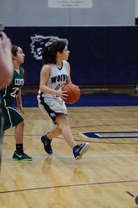 Oswego Girls Basketball  Vs Plainfield Central 2013 059