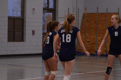 Oswego East Volleyball Vs Metea Valley 2012 350