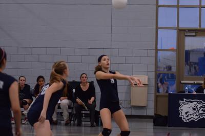 Oswego East Volleyball Vs Metea Valley 2012 336