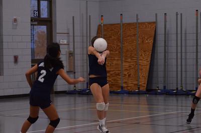 Oswego East Volleyball Vs Metea Valley 2012 343