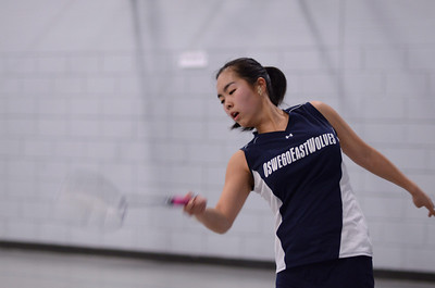 Oswego East Badminton 2013 033