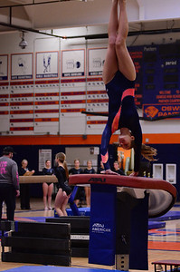 Oswego Girls Gymnastics 2012 033