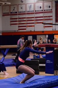 Oswego Girls Gymnastics 2012 036