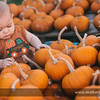 Pumpkin-Otermat-8