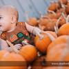 Pumpkin-Otermat-7