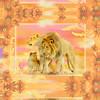 14x11_lionfamily_2inbrdr