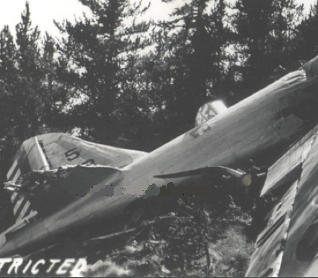 The gas tanks exploded and the ensuing fire engulfed the plane back to the radio operator's compartment.