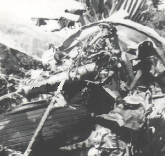 THE CRASH SITE - OCTOBER 1941<br /> <br /> The left wing broke off about 10 feet of the top of approximately six trees. The aircraft then hit the ground approximately 30 feet beyond the group of trees, tearing off both wings and the horizontal stabilizer.