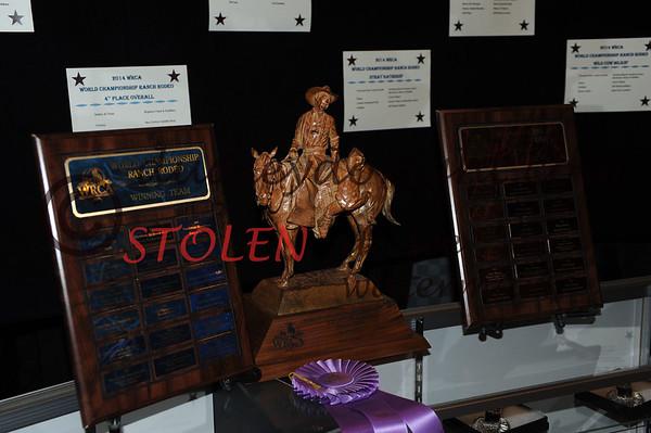 WRCA2014-Wnit-035 TopTeam Award