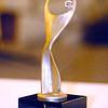 The 2013 ATHENA Award.