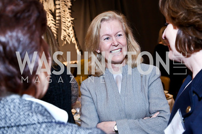 Irish Amb. Anne Anderson. Photo by Tony Powell. 2014 International Women's Day Lunch. Mayflower Hotel. March 5, 2014