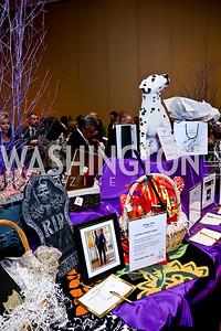Photo by Tony Powell. 2014 Medstar NRH Gala. Marriott Marquis. October 30, 2014