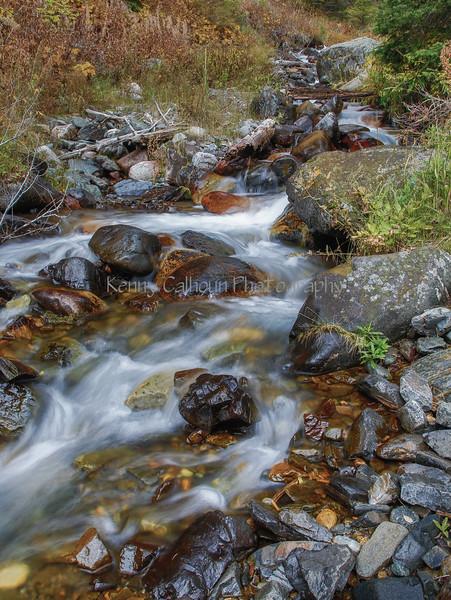 Quake Lake Pond and Creek_N5A2410