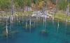 Quake Lake Pond and Creek_N5A2397