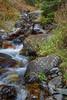 Quake Lake Pond and Creek_N5A2405