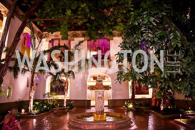 Photo by Tony Powell. 2014 Noche de Gala. OAS. November 8, 2014
